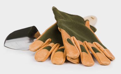 gloves_trowel_website